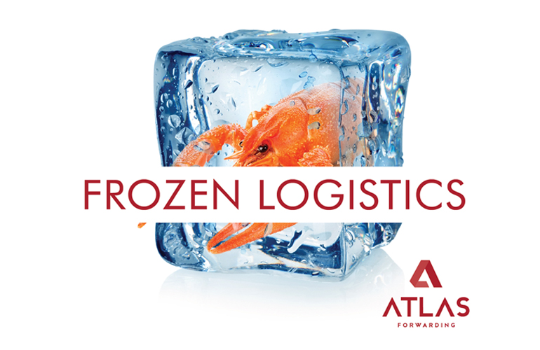 FROZEN LOGISTICS: ATLAS FORWARDING EN EXPOMAR Y SEAFOOD